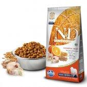 N&D Düşük Tahıllı M.Balık/Portakal Büyük Irk Yetişkin Köpek Maması 12 Kg