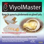 30lu Sünger Yumurta Gönderme Viyolü-4