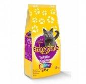 Econature Gurme Yetişkin Kedi Maması 15kg