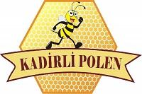 Polen Balevi